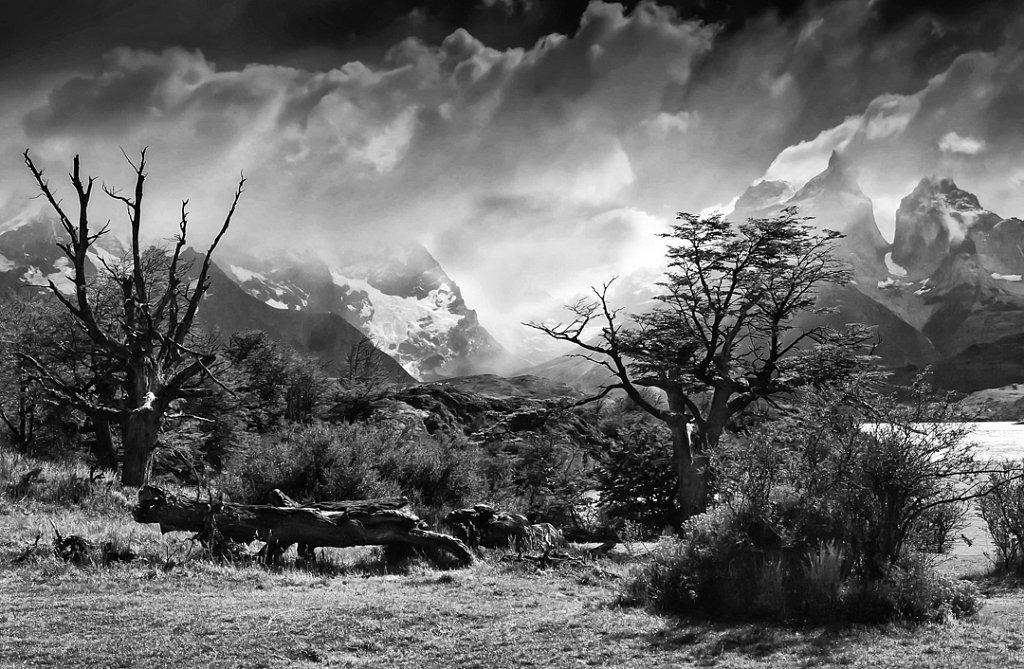 Chili - Parc Torres del paine