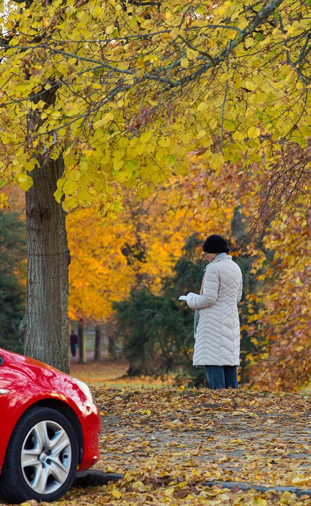 Parc-Versailles.jpg